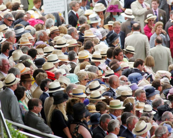 ae7196a69 Glorious Goodwood | Herald and Heart Hatters